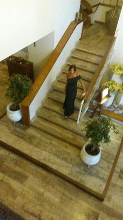 Hotel Mirò: Hotel Miro