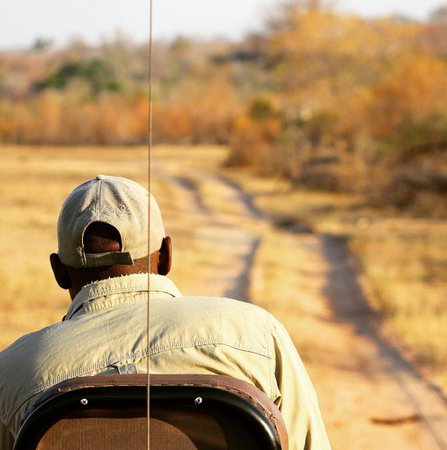 Elephant Plains Game Lodge: Tracking