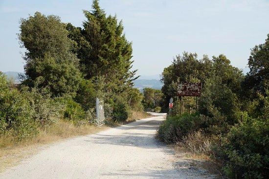 Antico Borgo di Tignano: De toegangsweg naar Antico Borgo Tignano.