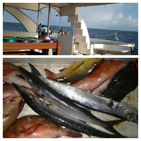 Eriyadu Island Resort: Sunset Fishing