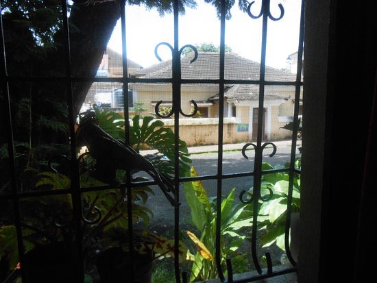 Afonso Guest House Photo