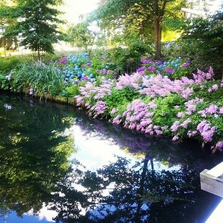 Viborg, Denemarken: De flotte blomster ved siden af åen.