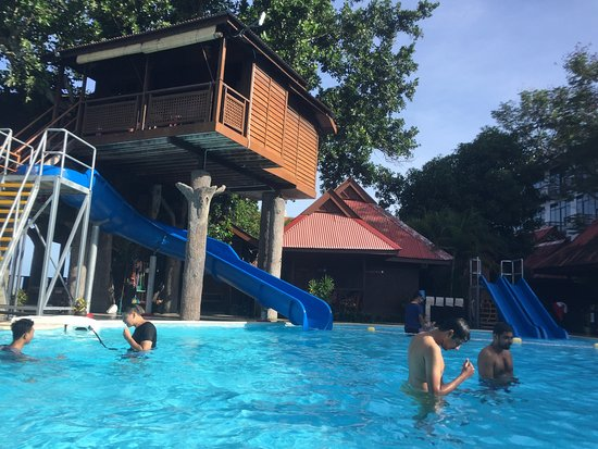 malibest tree house and pool picture of malibest resort langkawi tripadvisor