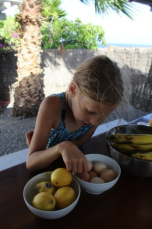 Finca de Arrieta: at our table in the yurt kitchen, with fresh eggs from the hen house (and sea in background)