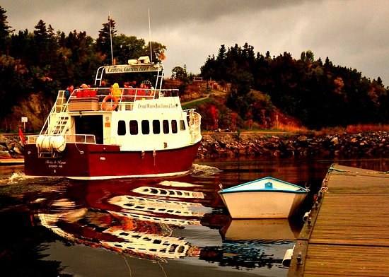 Corner Brook, Canada: Crystal Waters Boat Tours