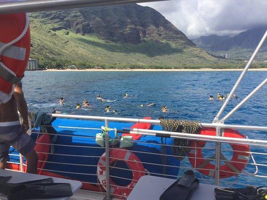 Aulani, a Disney Resort & Spa: Catamaran Excursion