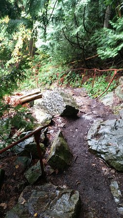 Wiarton, Canadá: Trail down from the spiral stair