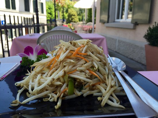Lee's Garden Rest. Horgen: Stir fried bean sprouts