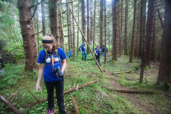 Gustavus, AK: Exploring in the woods