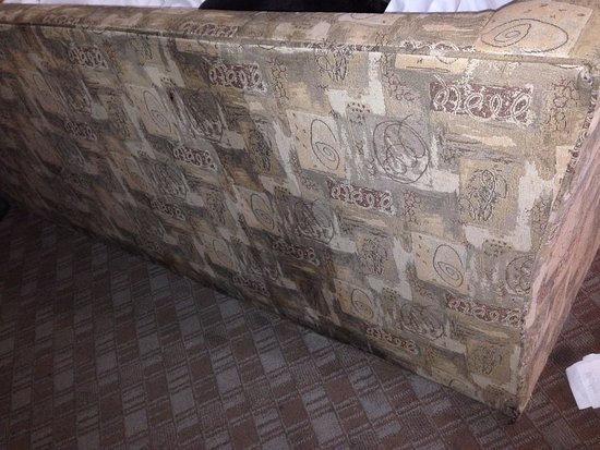 Overland Park, KS: Back of couch. We place a sheet on the couch the entire time because it was so filthy.