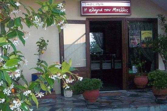 Ano Poroia, Hellas: Η μυρωδιά των γιασεμιών σε μαγεύει!!!