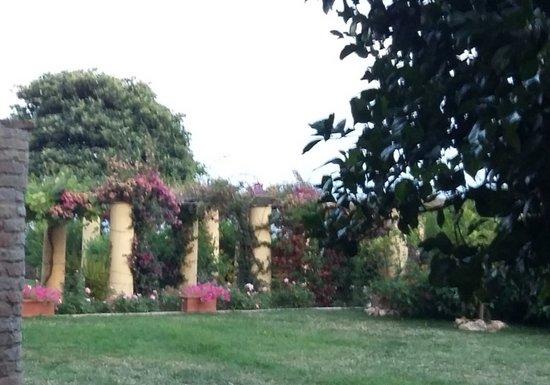 Giardino napoletano foto di palazzo d 39 avalos vasto - Giardino d abruzzo ...