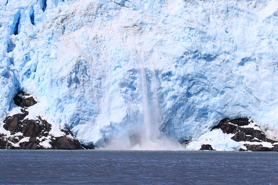 Alaska Saltwater Lodge Small Group Whale Watching, Wildlife & Glacier Tour: Had lunch in front of this glacier