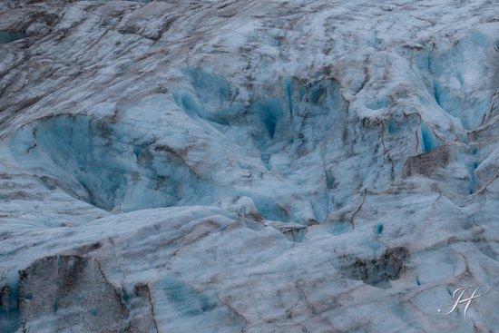 Kenai Fjords National Park 사진