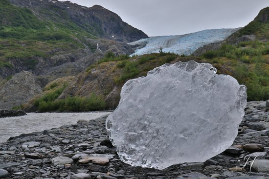Parque Nacional de los Fiordos de Kenai, AK: Found a large chunk of glacial ice in the river.