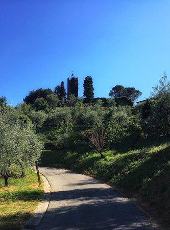 Montespertoli, Italy: photo5.jpg