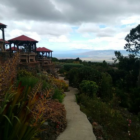 Kula Lodge: Great views