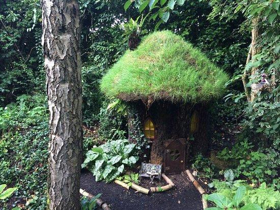 Kilmallock, Ierland: IMG-20160819-WA0001_large.jpg