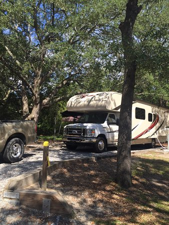 Adel, GA: Great Camp Sites