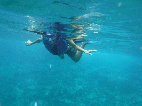 Kealakekua Bay : Snorkeling in K-Bay