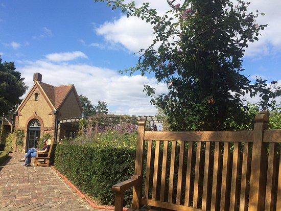 Bushey Rose Garden: Beautiful place :)