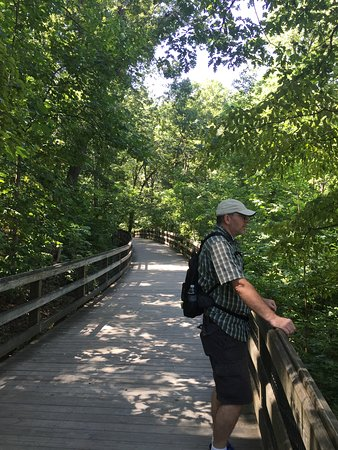 Saunders-Monticello Trail: Loved this trail
