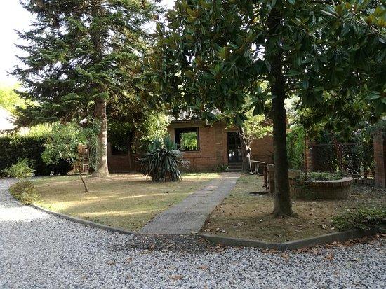 Palaia, Italia: IMG_20160809_180752_large.jpg