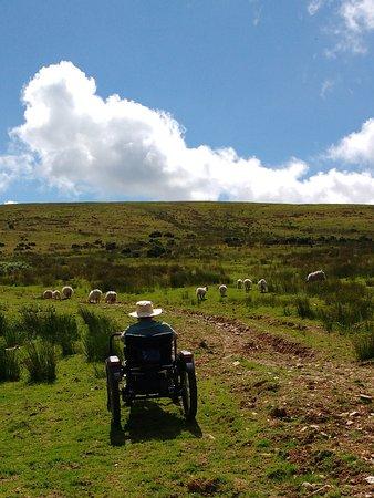Llanllwni, UK: Heading up the mountain