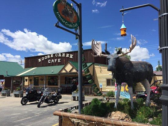 Walden, CO: Der Elch an der Straße ist nicht zu übersehen