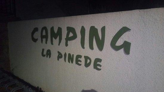 Lézignan-Corbières, Francia: Camping la Pinede