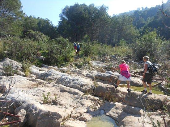 Costa Blanca, Spain: Jalon Valley