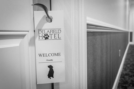 Delafield, WI: Pet Friendly