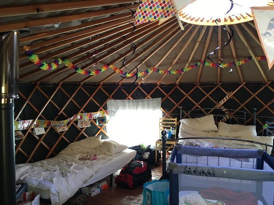 Rosemarkie, UK: The lovely Juniper yurt with some added party decorations!