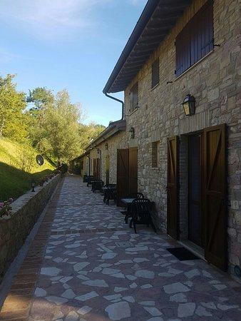 Le Querce di Assisi: IMG-20160819-WA0008_large.jpg