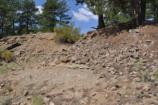 Florissant, Colorado: Shale and exposed strata.