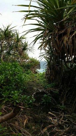 Upolu, Samoa: Coastal Walk