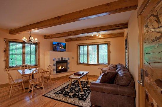 Roseland, VA: Living Room, Wilhelm's House