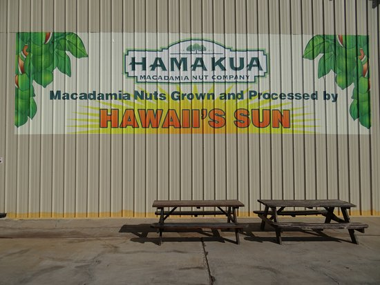 Kawaihae, ฮาวาย: Hamakua Macadamia Nut Co.