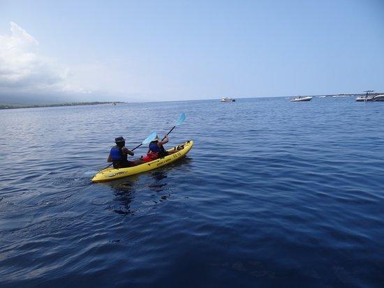 Kealakekua, Hawaï : Kayaking across the Bay