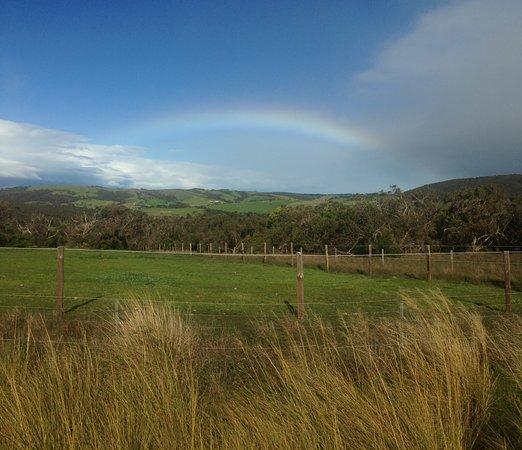 South Australia صورة فوتوغرافية