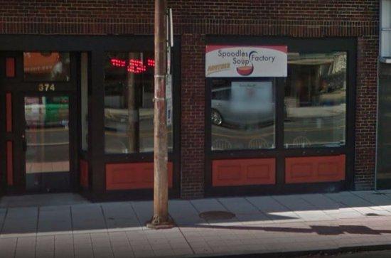 Foxboro, MA: Hard to find Spoodles