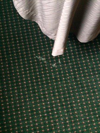Avon, โคโลราโด: stain on floor
