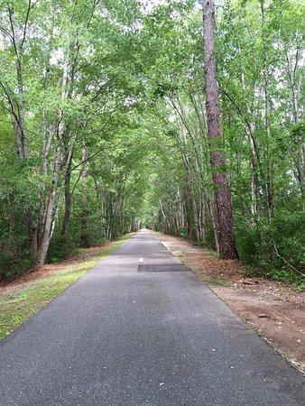 Jacksonville-Baldwin Rail Trail : photo1.jpg