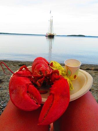 Ρόκλαντ, Μέιν: Lobster bake - the lobster was caught <24 hours prior!