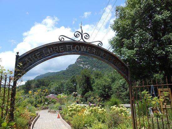เลกลัวร์, นอร์ทแคโรไลนา: Entrance to Lake Lure Flowering Bridge