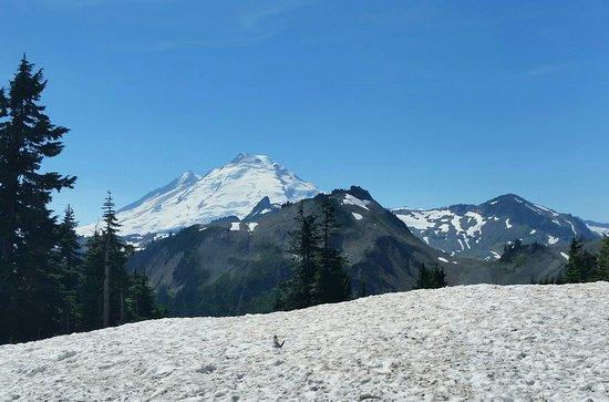 Glacier, WA: 20160819_140652-1_large.jpg