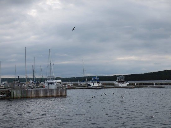 Lewisporte, Canadá: View from the dock area.