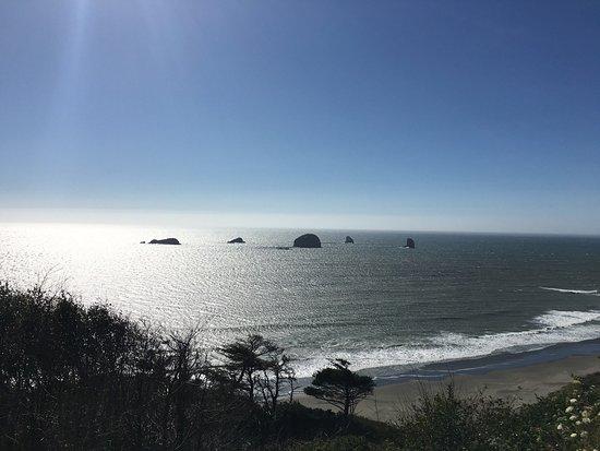 Ocean Suites: photo1.jpg