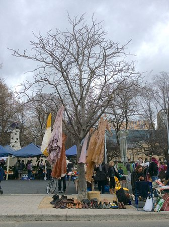 Salamanca Market: Why not use the bare trees and a display.