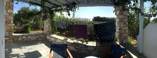 Δρυός, Ελλάδα: A wonderful place with the amazing Flora!!!